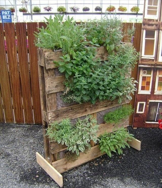 vertical garden pallet