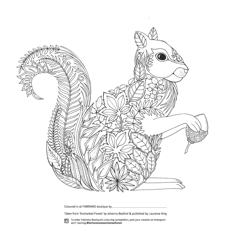 """Enchanted Forrest Malvorlage """"Eichhörnchen"""""""