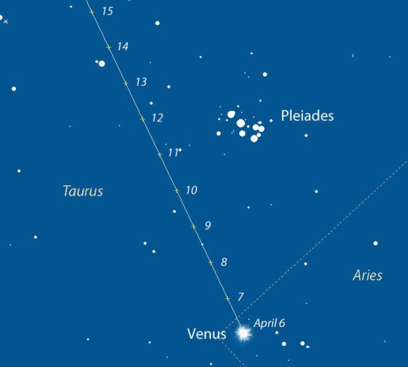 Map showing Venus' path daily from April 6-15, 2015 as it makes a pass at the Pleiades. Created with Chris Marriott's SkyMap