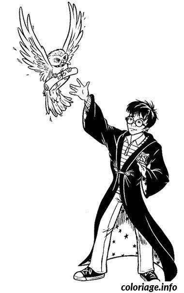 Coloriage Harry Potter Et Sa Chouette Hedwige Jecoloriecom