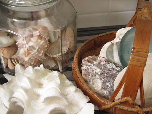 Shells in Candy Jars and Baskets