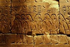 Egyptian Heiroglyphics