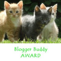 blogger buddy award