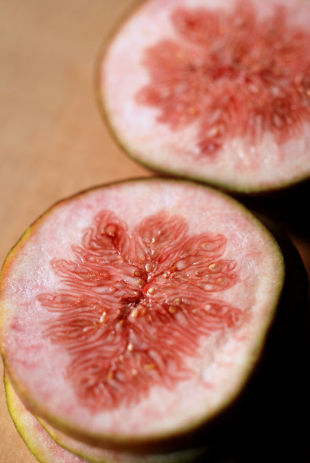 Sliced Figs© by Haalo