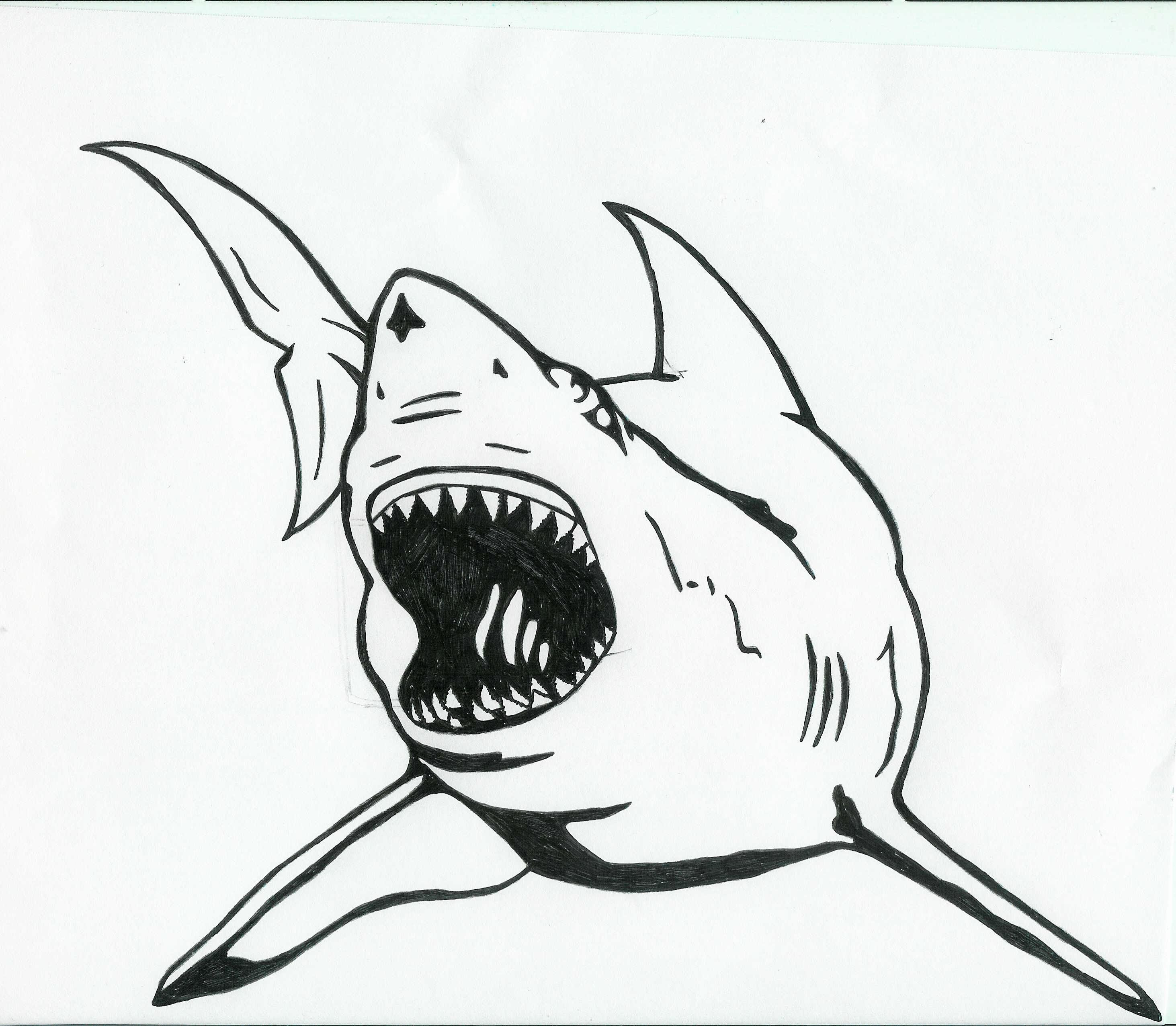 Great White Shark Tattoo Design