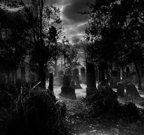 Cemeteries are dark and quiet at night. You could actually feel the presence of the dearly departed. They feel close by. Some are too close. I see dark shadows moving between the graves. Are the dead still here? Some linger on to haunt us. THE DEAD GAME by Susanne Leist http://www.amazon.com/author/susanneleist
