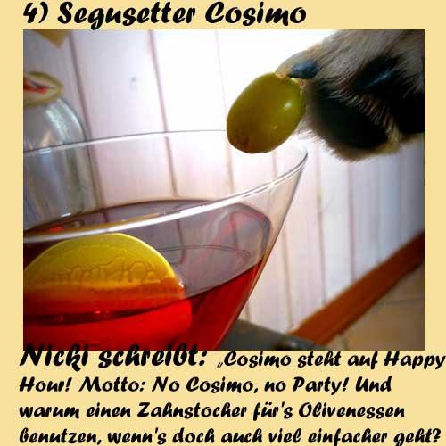 4-Segusetter-Cosimo