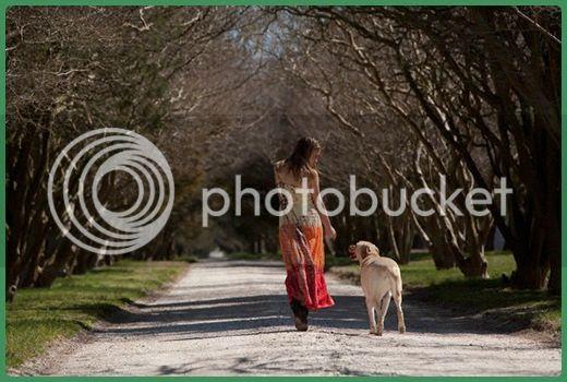 photo activities-dog-03_zps0726babb.jpg