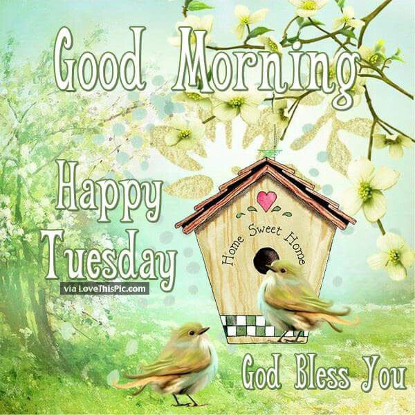 God Bless You Good Morning Happy Tuesday Pictures Photos And