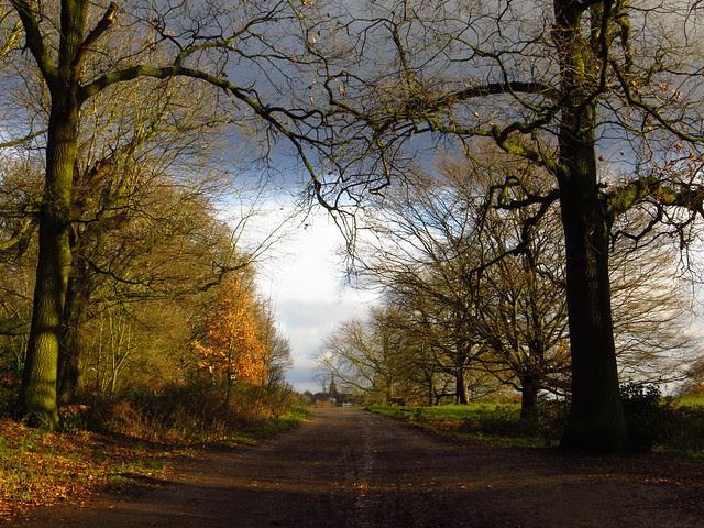 The Boundary Path