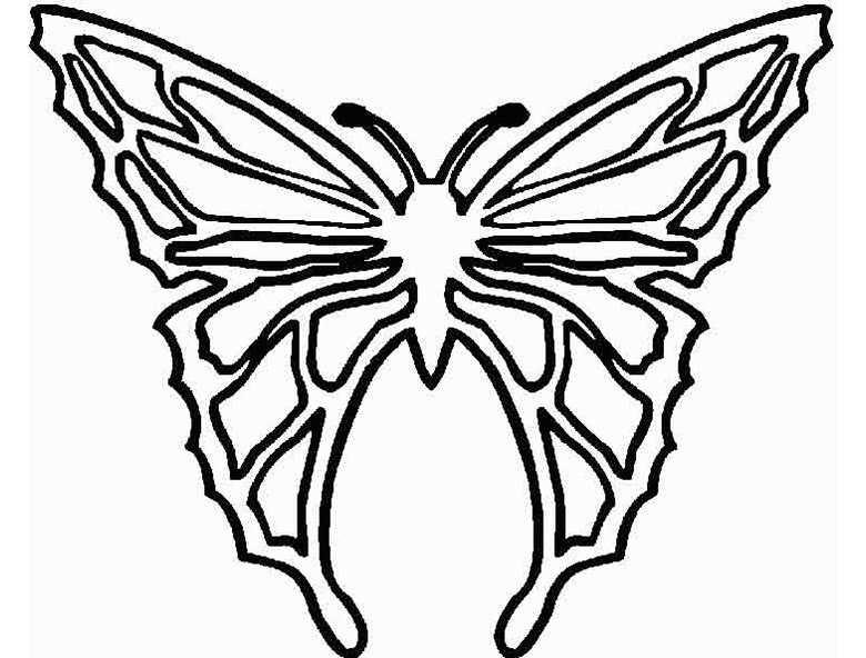 Schmetterling 9 | Ausmalbilder Kostenlos