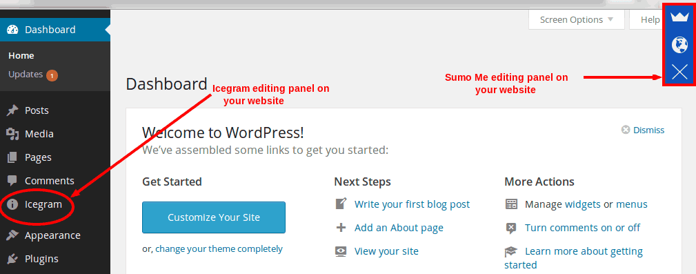 Start working with SumoMe or Icegram from WP Admin...