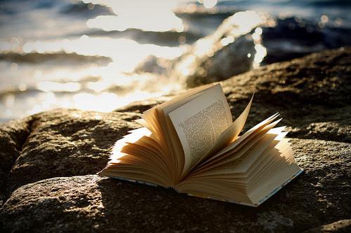 Libro entre las rocas