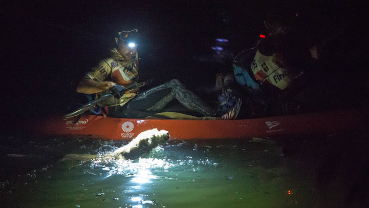 Stray_Dog_Arthur_Completed_430-mile_Race_5