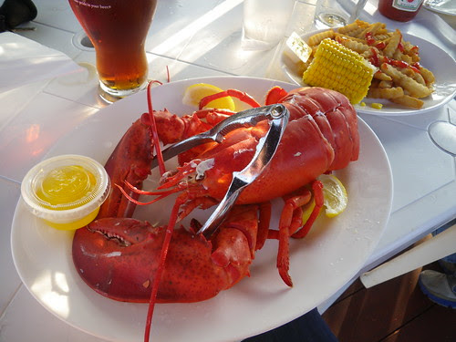 Sometimes you just have to get the lobster.
