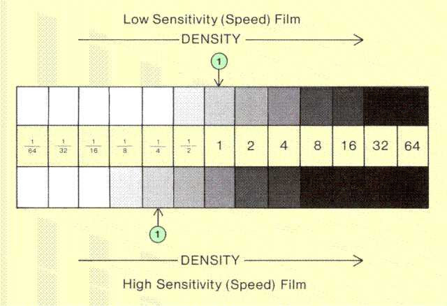 The Photographic Process And Film Sensitivity