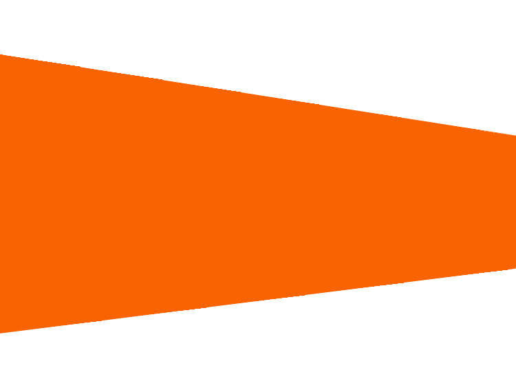 Orange Windsock Flag
