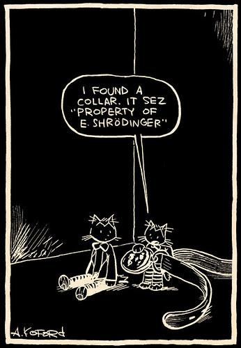 Laugh-Out-Loud Cats #2377 by Ape Lad