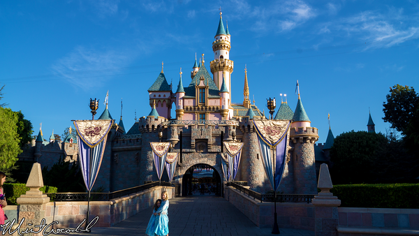 Disneyland Resort, Disneyland, Sleeping Beauty Castle, Bridge, Parapet, Railing, Rail