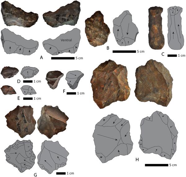 Figura 4 Flakes y núcleos de Kathu Townlands, Beaumont excavación.