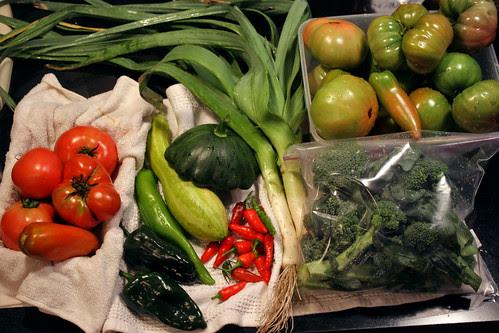todays harvest 8-22-12