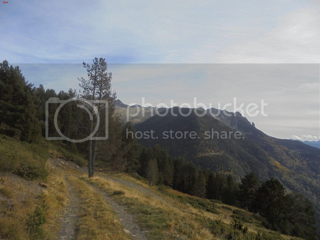 photo BACHIMALA - CULFREDAS 11-10-15 088_zpstnrnxiw4.jpg