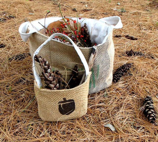 gathering bucket of nature
