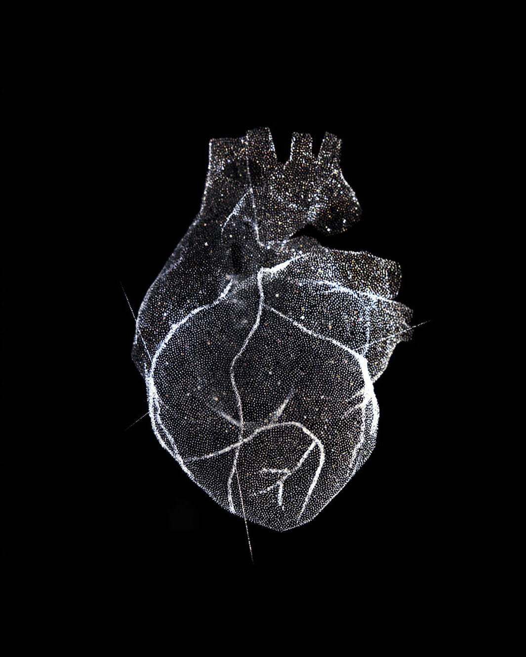 Reiner Riedler: Glass model of a heart, 2012