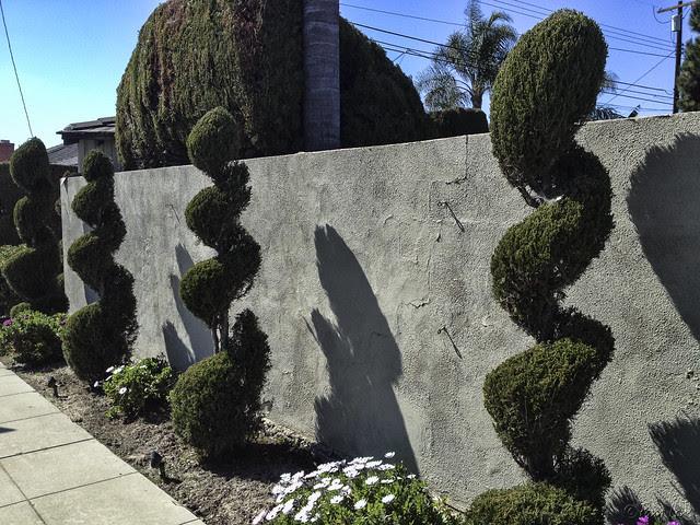 Spiral bushes