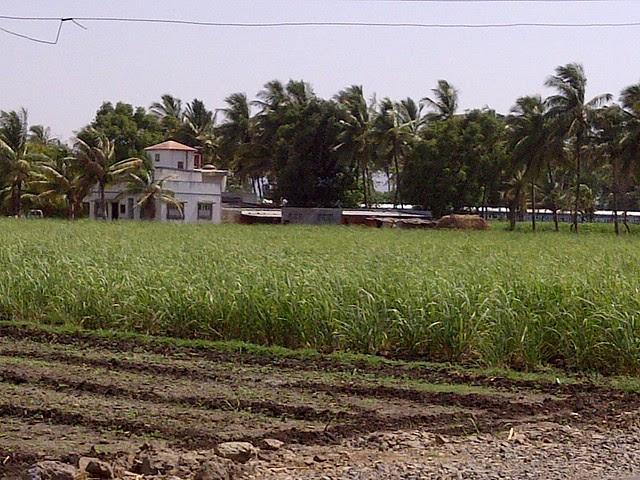 A Bungalow near Kanchan Vrundavan - Visit Kanchan Vrundavan, 1 BHK & 2 BHK Flats at Koregaon Mul, near Uruli Kanchan Pune 412202
