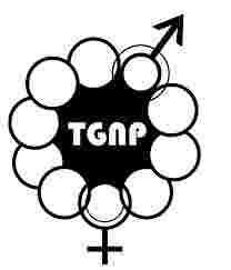 4 Job Opportunities at TGNP Tanzania