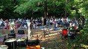 DNC Concert