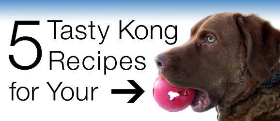 6 Tasty Kong Recipes for Your Dog