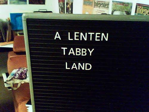 a lenten tabby land