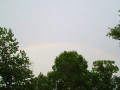 Rainbow by Teckelcar