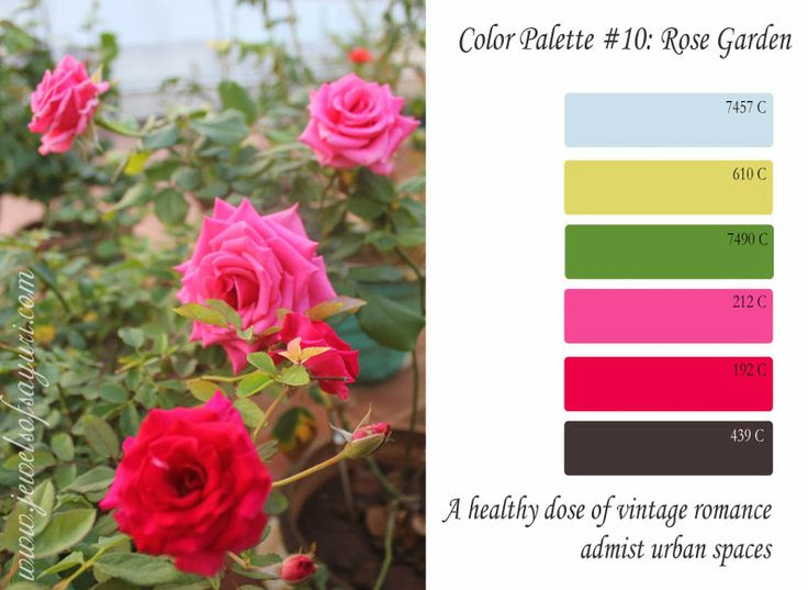 Jewels of Sayuri: Free color Palette - Rose Garden