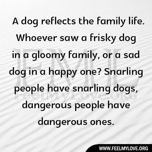 Quotes About Complicated Family Relationships 15 Quotes