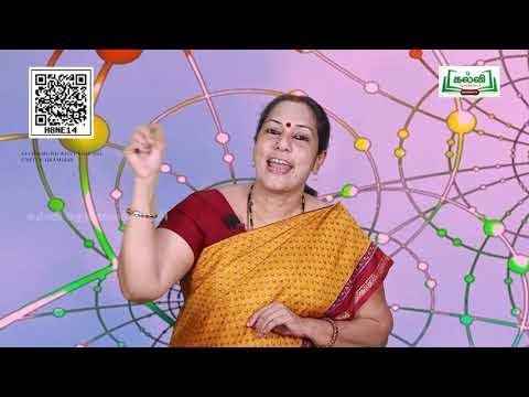 11th Communicative English  Grammar  Spare A Thought  Unit 6  Part 5  Kalvi TV