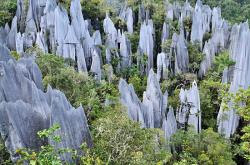 gunung-mulu-parc-national-borneo-malaisie.jpg