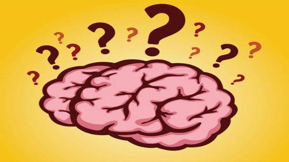 Brainquestion_big_think