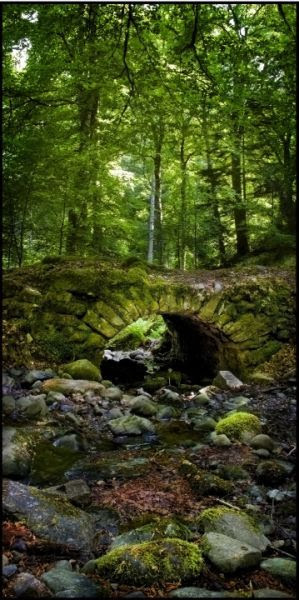 "Fairy Bridge!  (Reelig Glen, Scotland) ""The bridge and grotto in Reelig Glen, near Inverness. The story goes that they were built by the fairies living in the wood, which is why locals call it Fairy Glen rather than Reelig"""