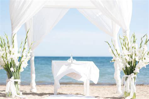 Home   Pura Vida Ibiza
