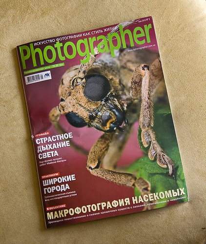 longhorn beetle image on the front cover of Photographer  Magazine, Ukrainian ...IMG_5501 copy