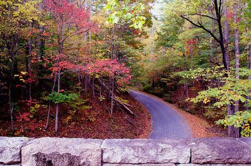The Road Below