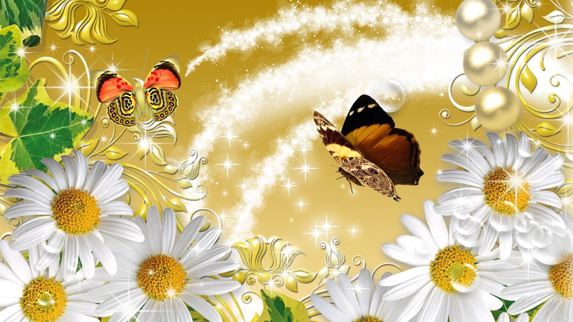 Daisies On Gold HD desktop wallpaper : Widescreen : High ...