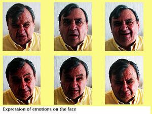 English: Facial emotions.