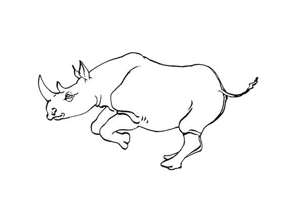 Coloriage Rhinocéros 6 Coloriage Rhinoceros Coloriages Animaux