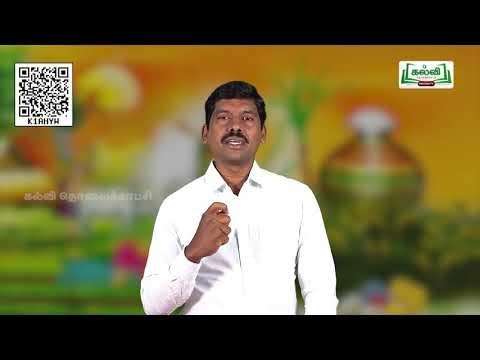 6th Tamil உரைநடை தமிழர் பெருநாள்  இயல் 2 அலகு 1  Part 1 Kalvi TV