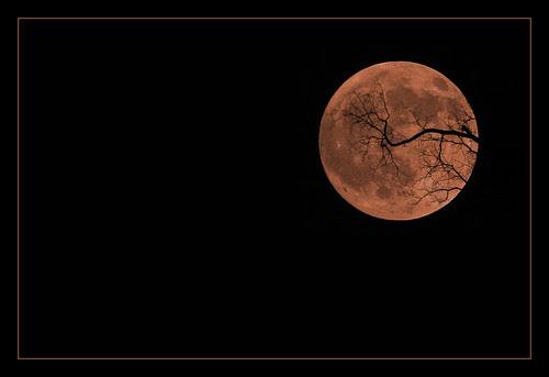 Smoke Tinged Halloween Moon (by peasap)