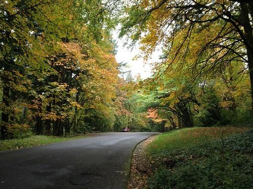 Fall Colors, Washington Park